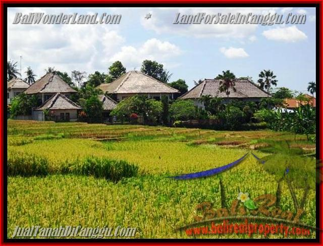 FOR SALE Exotic 930 m2 LAND IN Canggu Pererenan BALI TJCG146