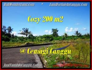 TJCG171 - JUAL TANAH MURAH DI CANGGU - AFFORDABLE LAND FOR SALE IN CANGGU BALI 001