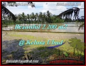 Magnificent Ubud Payangan BALI LAND FOR SALE TJUB475