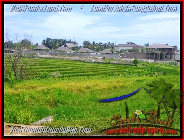 Affordable PROPERTY CANGGU BALI 1.450 m2 LAND FOR SALE TJCG137
