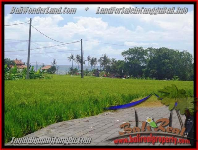 Affordable 560 m2 LAND SALE IN Canggu Cemagi BALI TJCG138