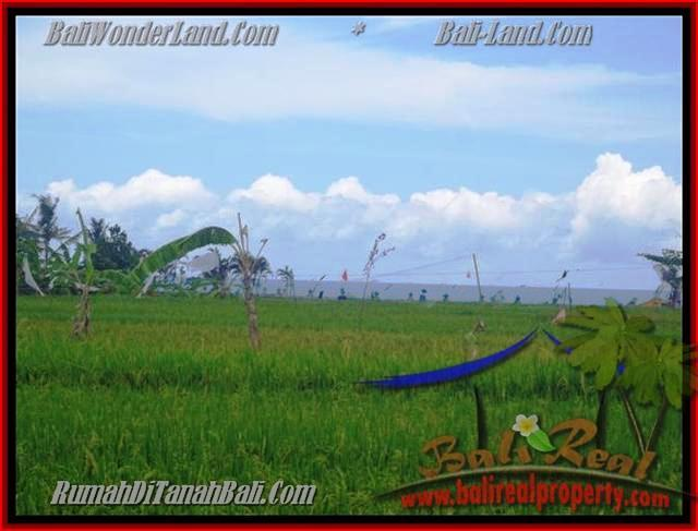 Exotic PROPERTY CANGGU 2.000 m2 LAND FOR SALE TJCG140