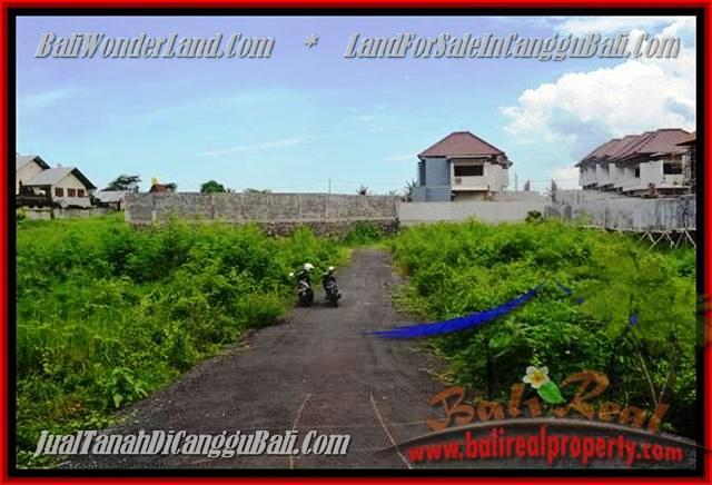 FOR SALE Beautiful PROPERTY 335 m2 LAND IN CANGGU TJCG142