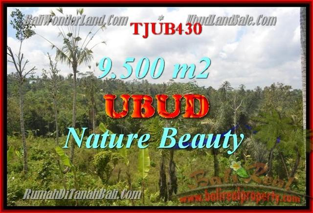 FOR SALE Exotic 9,500 m2 LAND IN UBUD TJUB430