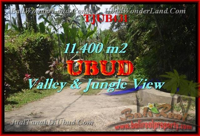 Exotic PROPERTY UBUD BALI 11,400 m2 LAND FOR SALE TJUB431