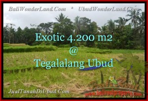 Magnificent PROPERTY LAND FOR SALE IN UBUD TJUB461