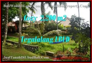 Affordable PROPERTY 2,200 m2 LAND IN UBUD BALI FOR SALE TJUB462