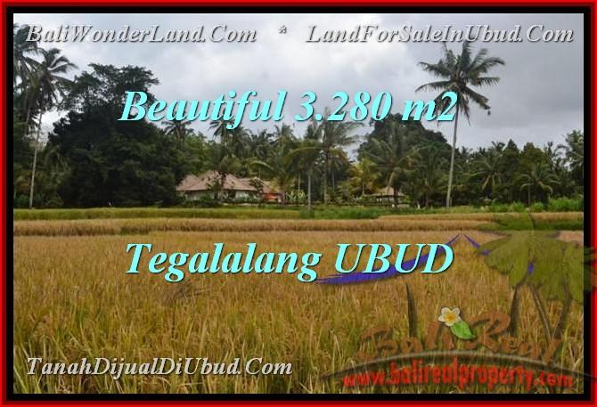 Exotic 3,280 m2 LAND SALE IN UBUD TJUB463