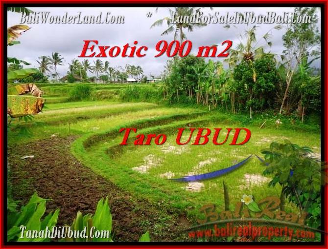Exotic 900 m2 LAND SALE IN UBUD TJUB464