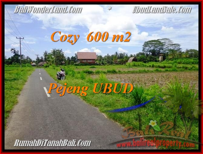 Beautiful PROPERTY LAND FOR SALE IN UBUD TJUB465