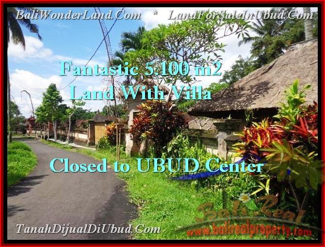 Affordable PROPERTY LAND SALE IN Ubud Pejeng BALI TJUB468
