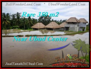 Magnificent Ubud Tegalalang BALI LAND FOR SALE TJUB476