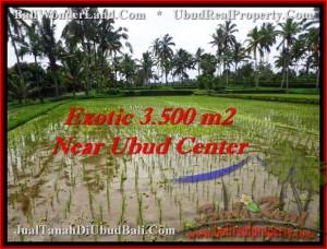 Beautiful LAND SALE IN Ubud Tegalalang BALI TJUB477
