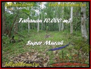 Beautiful 10.000 m2 LAND SALE IN TABANAN BALI TJTB177