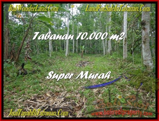 Beautiful 10.000 m2 LAND SALE IN TABANAN BALI TJTB177