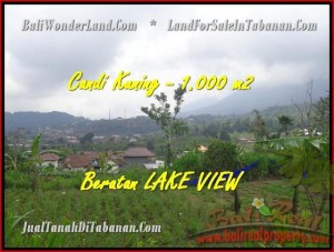 Magnificent TABANAN BALI 1.000 m2 LAND FOR SALE TJTB180
