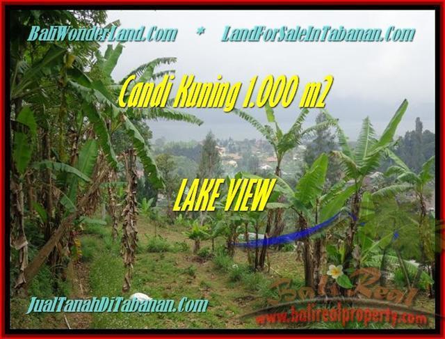 Exotic PROPERTY LAND IN TABANAN FOR SALE TJTB181