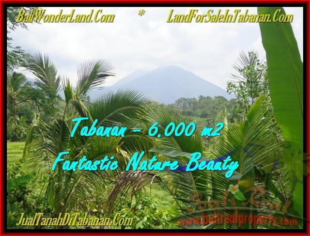 Affordable PROPERTY LAND FOR SALE IN TABANAN TJTB182