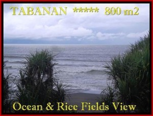 Exotic PROPERTY LAND IN TABANAN FOR SALE TJTB183