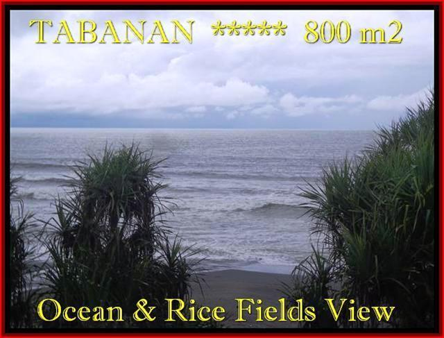 FOR SALE Magnificent LAND IN Tabanan Selemadeg BALI TJTB183