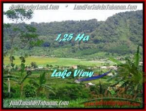 Magnificent PROPERTY Tabanan Bedugul 12,500 m2 LAND FOR SALE TJTB188
