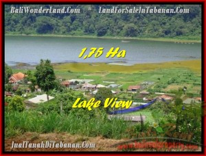 Affordable 17,800 m2 LAND IN TABANAN BALI FOR SALE TJTB189