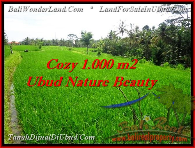 Exotic PROPERTY 1,000 m2 LAND SALE IN UBUD BALI TJUB478