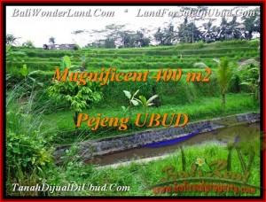 TJUB483 Tanah dijual murah - Land for sale in Ubud Bali 0