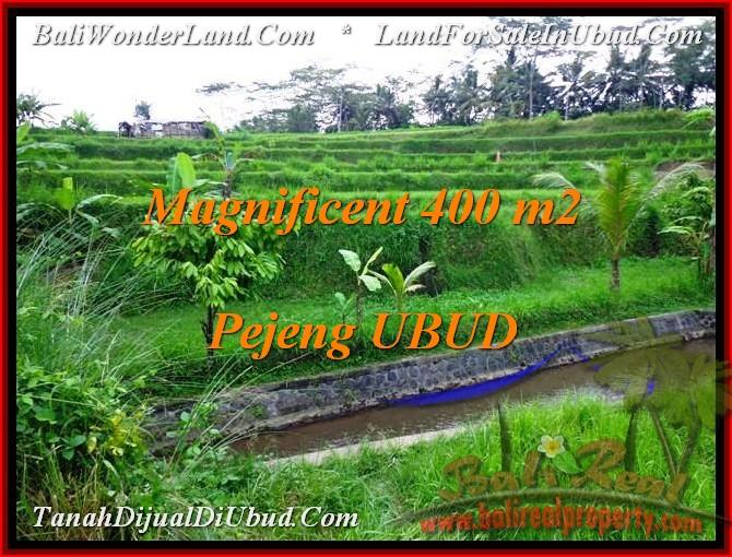 Affordable PROPERTY 400 m2 LAND SALE IN UBUD BALI TJUB483