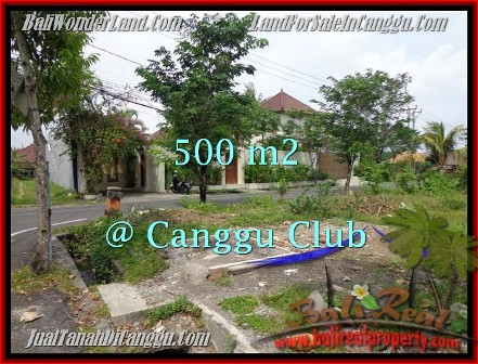 Exotic PROPERTY 500 m2 LAND SALE IN CANGGU TJCG176