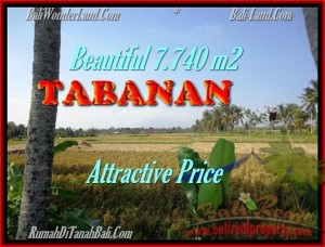 Magnificent PROPERTY 7.740 m2 LAND IN Tabanan kota FOR SALE TJTB173