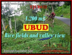Exotic PROPERTY LAND FOR SALE IN UBUD TJUB422
