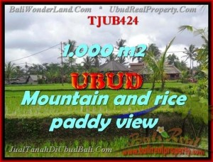 Magnificent LAND SALE IN Ubud Tegalalang BALI TJUB424