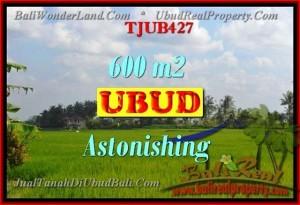Affordable LAND IN Ubud Tegalalang BALI FOR SALE TJUB427