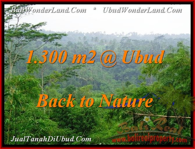 Affordable PROPERTY UBUD BALI 1,300 m2 LAND FOR SALE TJUB481
