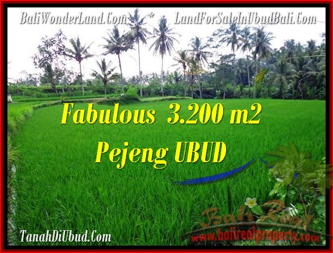 FOR SALE Exotic PROPERTY 3,200 m2 LAND IN UBUD BALI TJUB484
