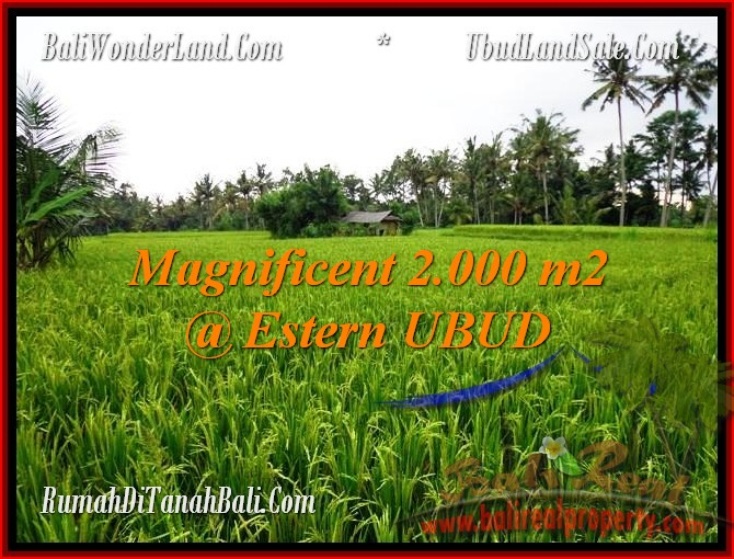 FOR SALE Exotic PROPERTY 2,000 m2 LAND IN UBUD BALI TJUB485
