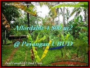 Exotic 4,800 m2 LAND IN UBUD BALI FOR SALE TJUB486