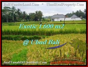FOR SALE Magnificent LAND IN Sentral Ubud BALI TJUB487