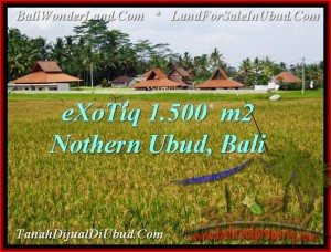 Affordable PROPERTY LAND FOR SALE IN UBUD TJUB488