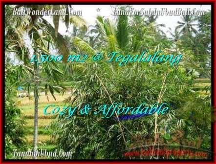 Affordable Ubud Tegalalang BALI LAND FOR SALE TJUB489
