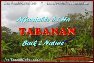 Beautiful 51,100 m2 LAND SALE IN TABANAN BALI TJTB166