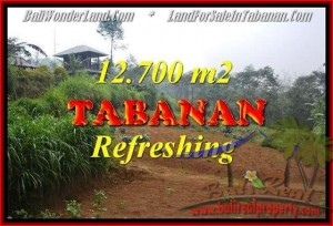 Beautiful 12,700 m2 LAND SALE IN TABANAN BALI TJTB167