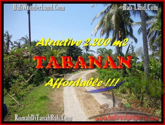 FOR SALE Affordable LAND IN Tabanan Selemadeg BALI TJTB169
