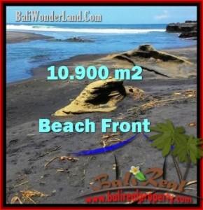 Beautiful PROPERTY LAND SALE IN TABANAN TJTB199