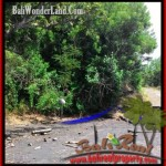 Magnificent PROPERTY LAND SALE IN TABANAN TJTB199