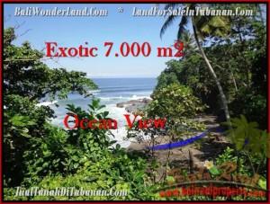 LAND IN Tabanan Selemadeg BALI FOR SALE TJTB200