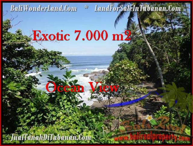 Magnificent PROPERTY 7,000 m2 LAND FOR SALE IN Tabanan Selemadeg TJTB200