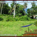 Exotic PROPERTY TABANAN LAND FOR SALE TJTB200