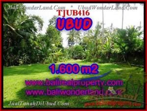 Affordable Sentral Ubud BALI LAND FOR SALE TJUB416